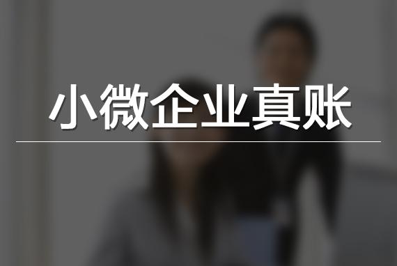 【回放】小微企业真账