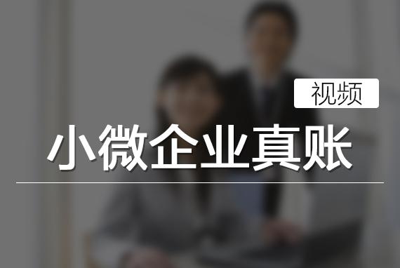 小微企业真账(视频)