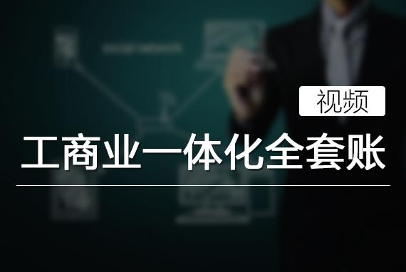 工商业一体化全套账(视频)