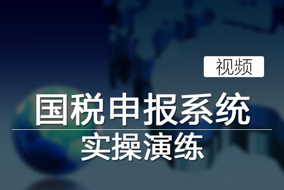 国税申报系统实操演练(视频)