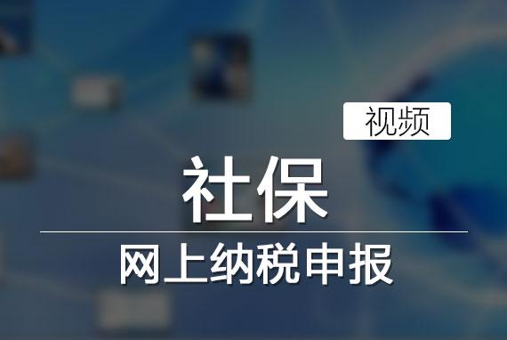 社保网上纳税申报