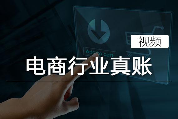 电商行业真账(视频)